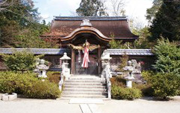 国指定重要文化財 老杉神社
